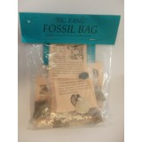 Big Bang Fossil Bag - 10 different fossils