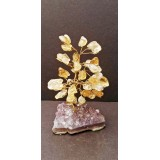 Citrine on Amethyst base - Gemstone Tree - 120mmHx75mmW
