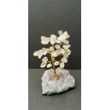 Clear Quartz on Amethyst base - Gemstone Tree - 120mmHx75mmW